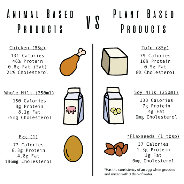 Animal Based Products vs Plant Based Products