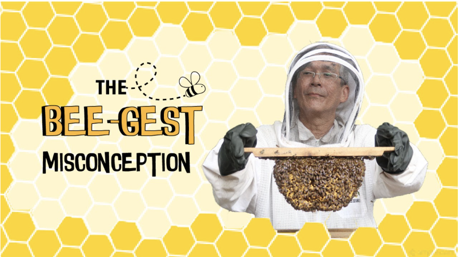 Mr John Chong, the founder of BEE AMAZED garden, aims to debunk the misconceptions people have about bees. Photo Credit: Vivian Ong, Aqilah Salim and Mabel Lee.