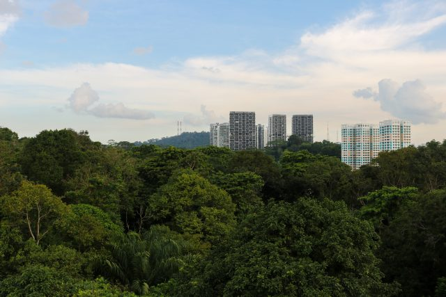 The two colourful HDB blocks in Bukit Panjang have been around before the observation tower was constructed.